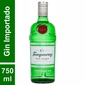 Kit Gin Tanqueray + 2 taças + especiarias