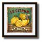 Kit 3 Quadros Decorativos Cozinha | Frutas Vintage