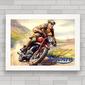 QUADRO MOTO TRIUMPH RACE