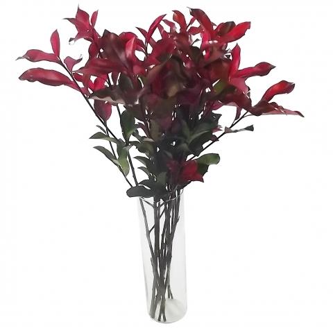 Fotínia Vermelha em maço<br>vaso não incluso