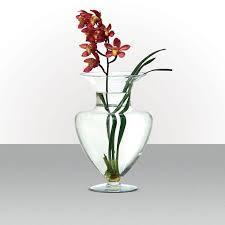 Vaso de Vidro Bojudo Largo<br>30 x 43 cm