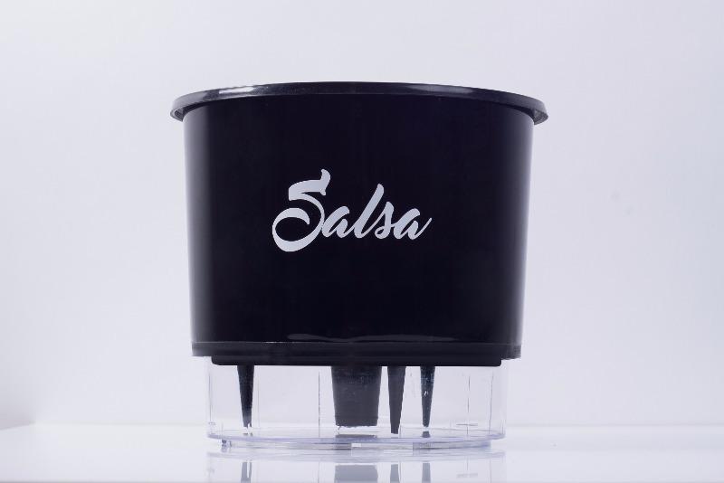 Vaso Autoirrigável Salsa <br> Ø 16cm x 14cm