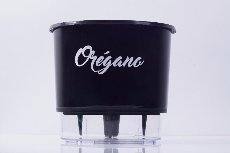 Vaso Autoirrigável Orégano <br> Ø 16cm x 14cm