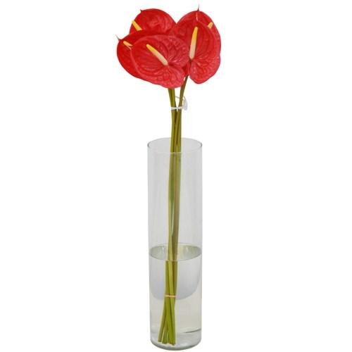 Antúrio Vermelho em maço<br>vaso não incluso