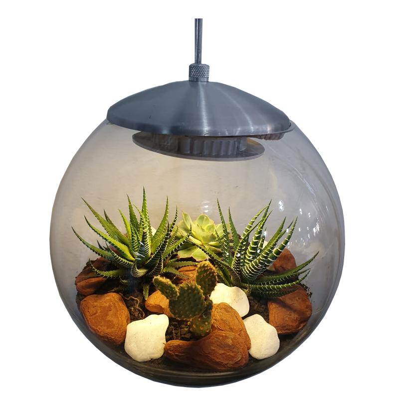 Luminária de teto com led e arranjo de suculentas com suporte prateado