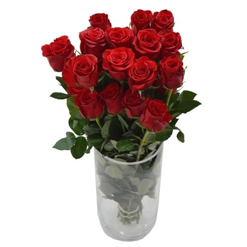 Rosa Importada Vermelha 60cm<br>maço com 25 hastes -vaso não incluso