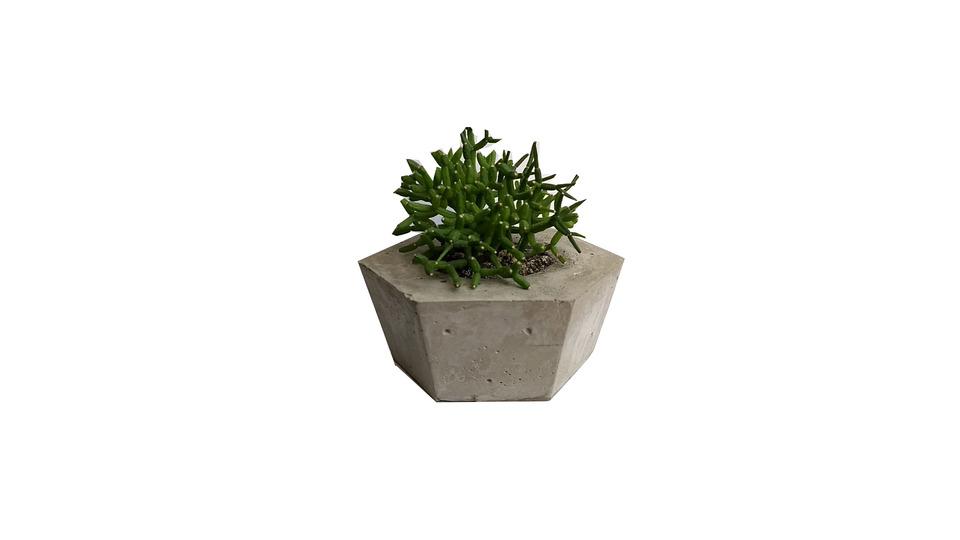 Mini Vaso Hexagonal de Cimento<br> a planta não acompanha o vaso