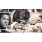 Fotografia ORIGINAL da Missa Pela Passagem de 1°Ano da Morte do Jogador GARRINCHA, Publicada no Jornal ÚLTIMA HORA, 21 de Janeiro de 1984