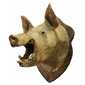 Taxidermia: Cabeça de JAVAPORCO Originário do Cruzamento Entre o Porco Doméstico e Javali