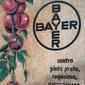 Placa com Termômetro de Publicidade BAYER  Agropecuária Meados do Século XX
