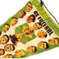 Flamula Campeões Mundiais de Futebol Suécia 1958
