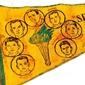 Flâmula do Time  S.R. SÃO MANOEL FUTEBOL DE SALÃO 5° Aniversário 1955 - 1960