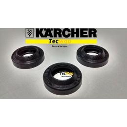 Kit Anel Raspador de Oleo Karcher 310-330-340