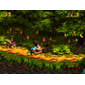 Cartucho Donkey Kong Country 3 para Super Nintendo