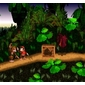 Cartucho Donkey Kong Country para Super Nintendo
