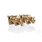Rinoceronte Dourado