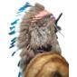 Nativo Americano TWO MOONS O Duas Luas (1847 - 1917) Chefe dos CHEYENNE, Medindo Quase 2 Metros