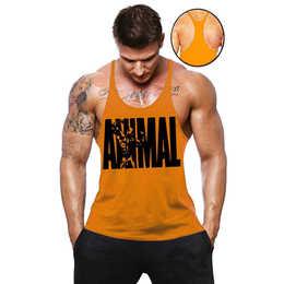e6aba71cf6a25 Camiseta Regata Cavada Masculina Academia Animal