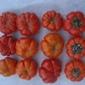 Sementes de Pimenta Pitanga