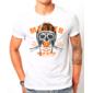 Transfer sublimático para camiseta Carros/Motos 002889