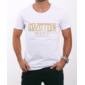 Transfer sublimático para camiseta Led Zeppelin 000259