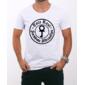 Transfer sublimático para camiseta Raul Seixas 000354