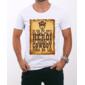 Transfer sublimático para camiseta Raul Seixas 000350
