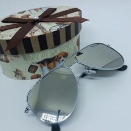 Óculos Vitrine Aviador- Prata
