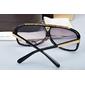 Óculos Louis Vuitton Evidence