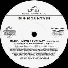 "Big Mountain – Baby, I Love Your Way PROMO 12"""