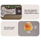 Incubadora Chocadeira 4-35 Ovos Automática Galinha Pato Cordona e Mais